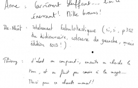 critiques-mentalisme-et-pnl-soiree-solucom-au-chalet-de-la-porte-jaune-2