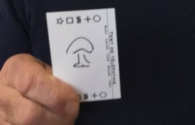 Un champignon