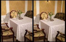 Table de salon dans une cabine de 1ere Classe du Titanic