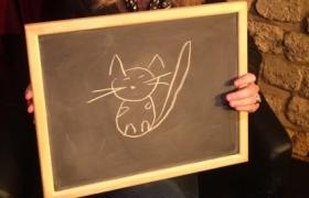 Un chat à deviner par télépathie lors du spectacle de mentalisme Remue Méninges