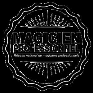 Logo magicien professionnel